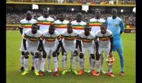 CAN 2015 : L'AFRIQUE DU SUD FACILE CONTRE LE MALI 3-0 32