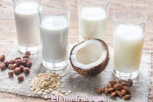 Les laits végétaux, une bonne alternative au lait de vache ? 2