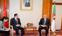 Sellal reçoit le ministre chinois de l'Agriculture : conforter la coopération et le partenariat 39