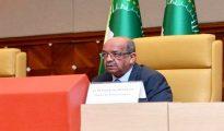 Sommet arabe: Messahel met en avant l'attachement de l'Algérie à l'unité arabe 11