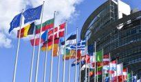 Diffusion d'une vidéo attentatoire aux symboles de l'Etat : le Parlement européen exprime ses «regrets» à l'Algérie 20