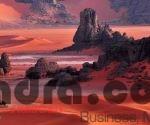 Clôture du Salon du tourisme et des voyages : la destination Algérie revalorisée 5