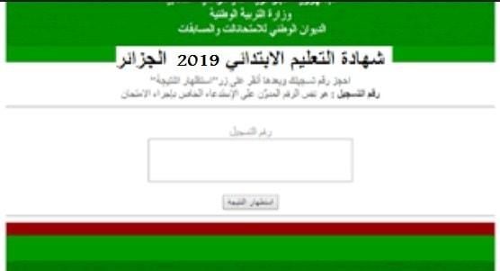 نتائج السانكيام 2021 الجزائر برقم التسجيل .. شهادة التعليم الابتدائي cinq.onec.dz الديوان الوطني 6