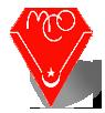 ماجر سفير لبطولة كأس الأمم الإفريقية (مصر 2019) 4