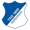 1899 Hoffenheim 23