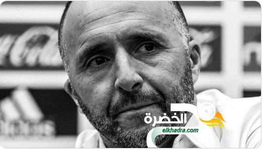 بلماضي يكشف سبب نجاحه حتى الآن مع المنتخب الجزائري 24